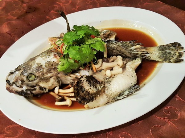 Steamed dragon-tiger grouper with mushrooms in soy sauce, spring onions and fresh coriander.