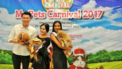 My Pets Carnival MP
