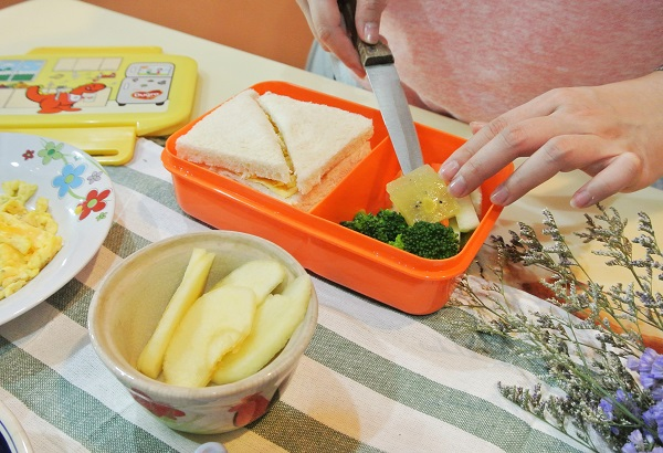 Nutritious Meals Dumex Dugro