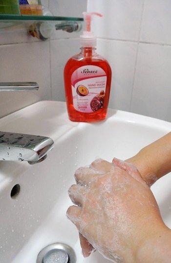 Sensez handwash