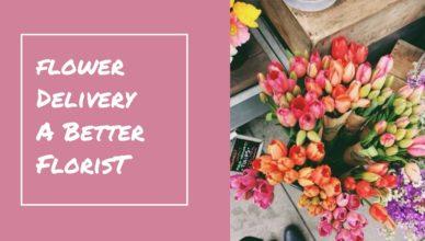 A better florist MP